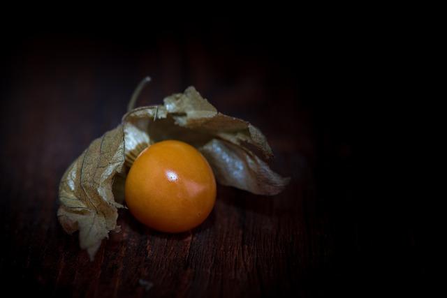 Physalis, Physalis Peruviana, Cape Gooseberry
