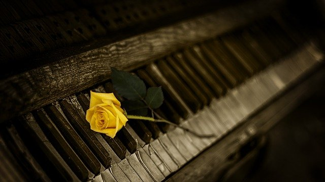 Piano, Rose, Yellow, Vintage, Keys, Melody