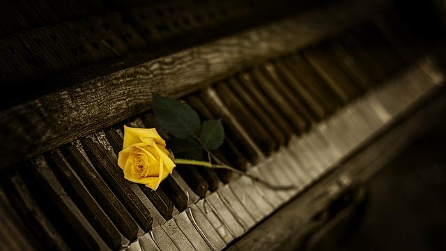 Piano, Rose, Yellow, Vintage, Keys, Melody