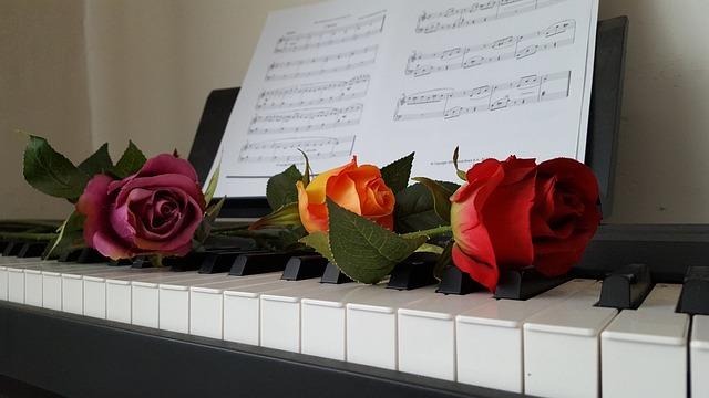 Piano, Rose