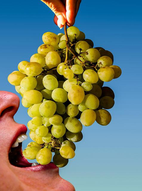 Grapes, Eat, Fruit, Keep, Pick, Harvest, Vintage