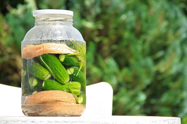 Pickled Cucumber, Cucumber, Food, Green, Vegetable