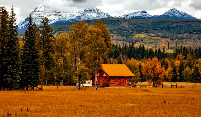 Autumn, Fall, Foliage, Landscape, Scenic, Picturesque