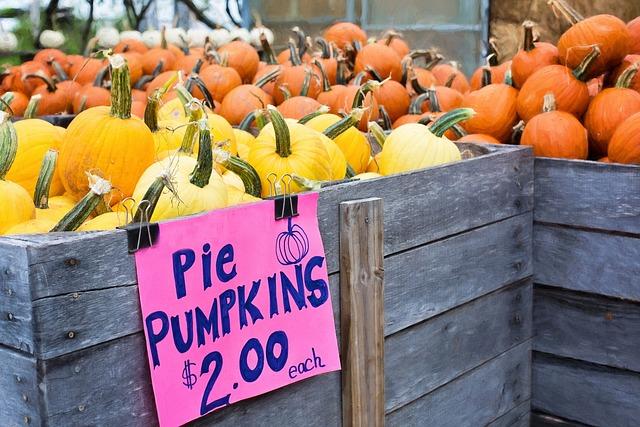 Pumpkins, Autumn, Fall, Pie Pumpkins, Autumn Background