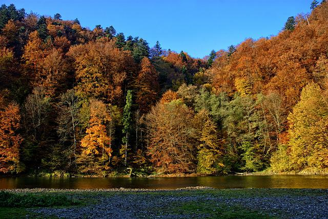Pieniny, Dunajec, Autumn Leaves, Colors, View, Nature