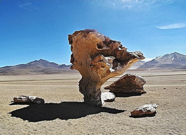 Bolivia, Tree, Pierre