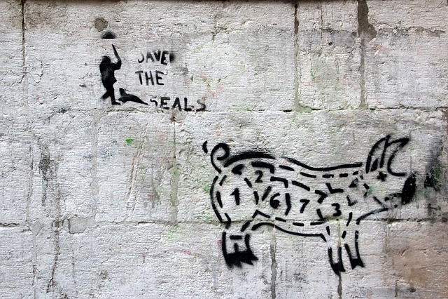 Grafitti, Pig, Hauswand, Painting