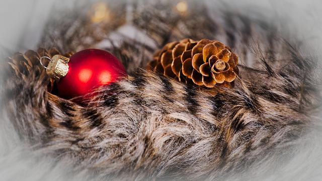 Christmas Card, Fur, Ball, Pine Cones, Greeting Card