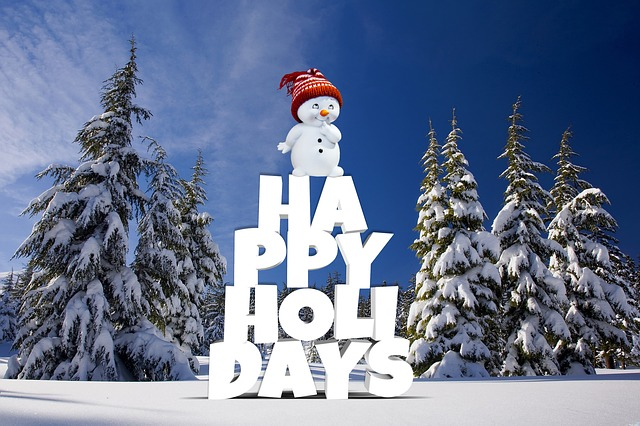 Christmas, Happy Holidays, Winter, Forest, Snow, Pine