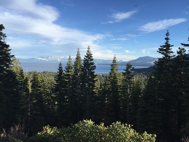 Lake Tahoe, Trees, Mountain, Pine, Tahoe, Lake