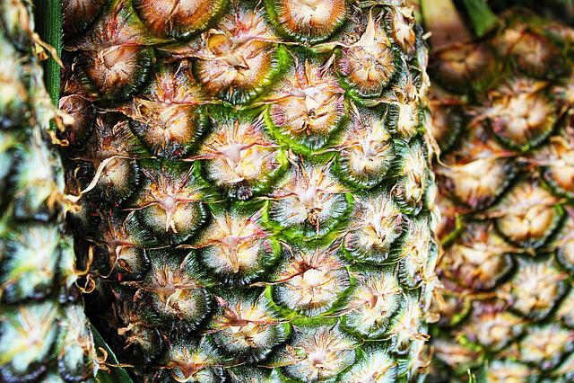 Pineapple, Texture, Macro, Pattern, Fruit, Fruits