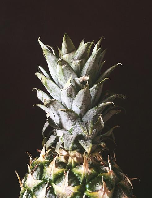 Pineapple, Nature, Pinapple