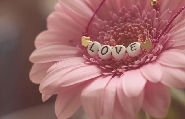 Gerbera, Pink Flower, Love, Bracelet, Romantic