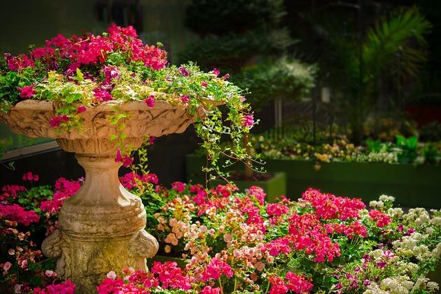 Garden, Flowers, Plants, Pink Flowers, Bloom, Blossom