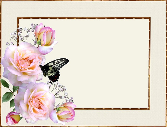 Greeting Card, Pink Roses, Butterfly