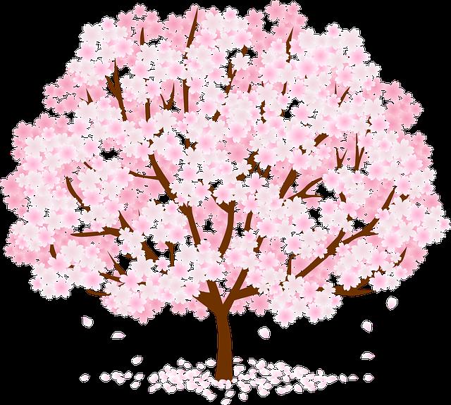 Tree, Blossom, Flower, Nature, Pink
