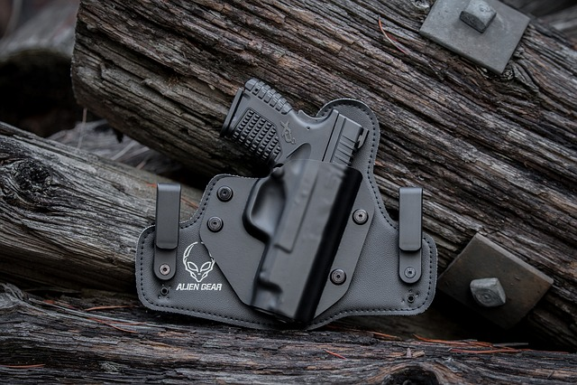 Gun, Pistol, Handgun, Weapon, Protection, Barrel
