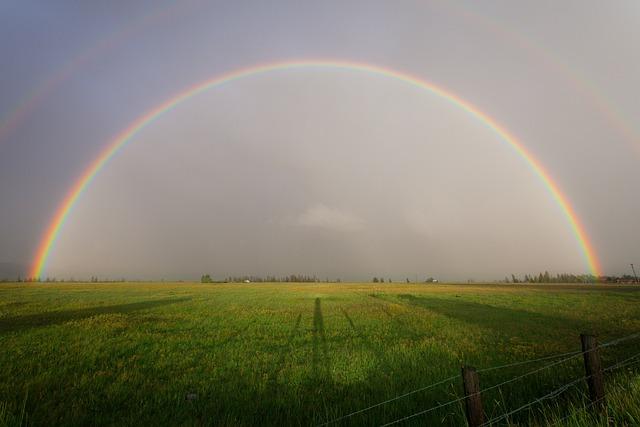 Nature, Landscape, Plains, Farm, Grass, Fences, Sky