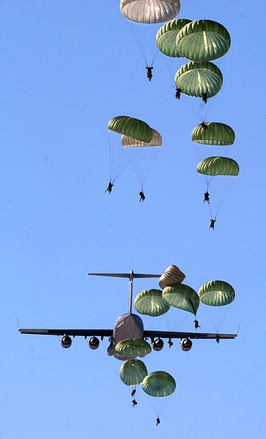 Parachutes, Parachutists, Plane, Jet, Military, Army