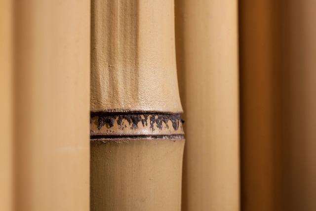 Bamboo, Giant Bamboo, Bamboo Wall, Yellowish, Plant