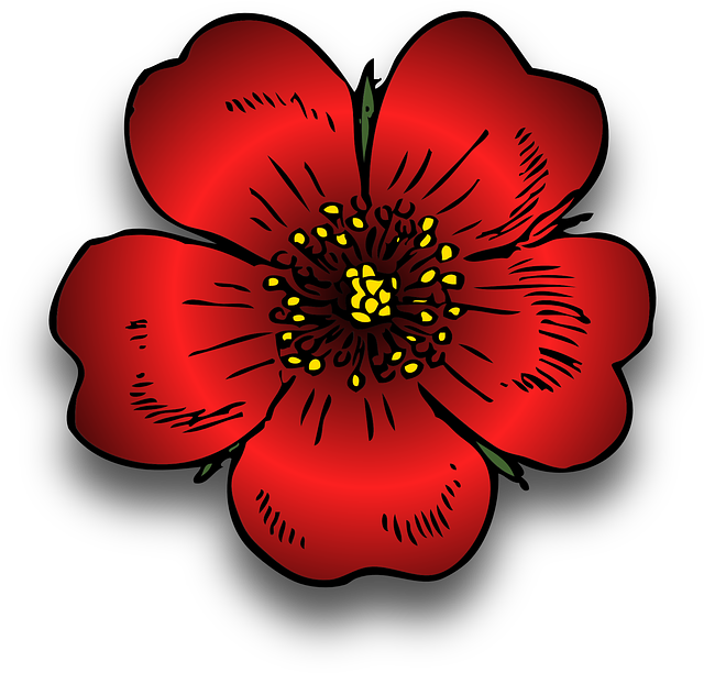 Plant, Red, Rosa, Rose, Wild, Blossom, Beautiful, Bloom