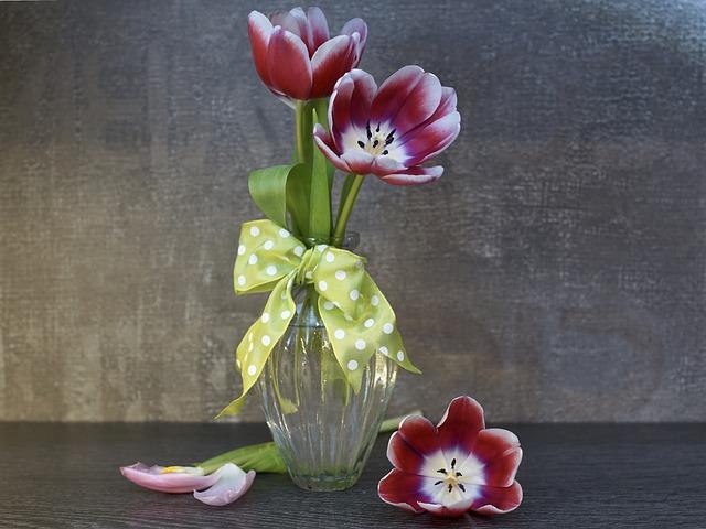 Flower, Nature, Plant, Floral, Petal, Color, Leaf