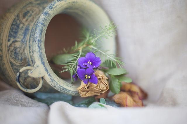 Background, Krupnyj Plan, Flower, Plant, Nature