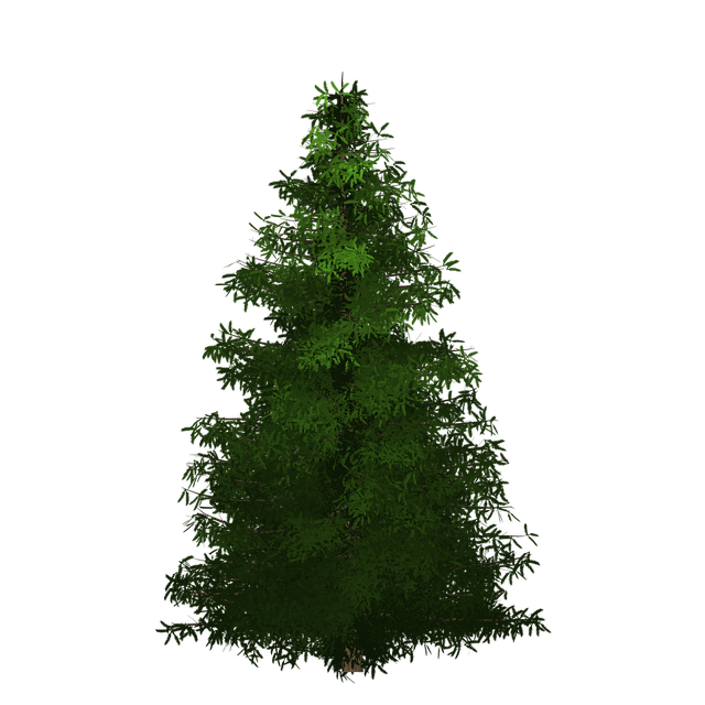 Spruce, Tree, Painted Tree, Green, Nature, Plant