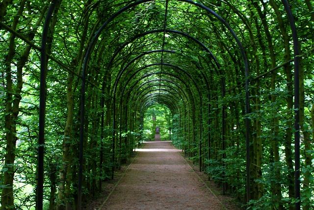Tunnel, Tunnel Of Plants, Promenade, Plant Tunnel