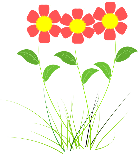 Flower, Pink, Plant, Vector Drawing