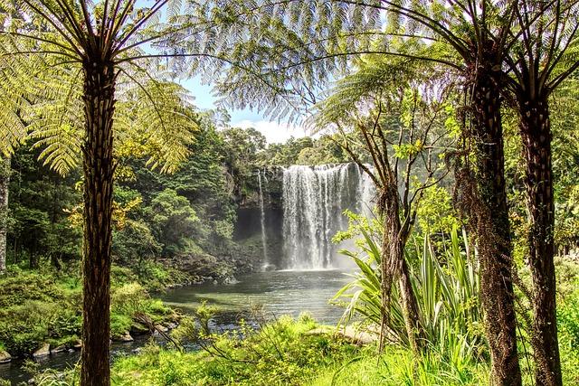 Nature, Wood, Tree, Plant, Landscape, Cascade, Water