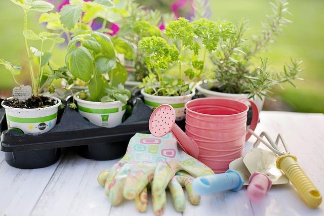 Planting, Spring, Herbs, Gardening, Plants, Tools