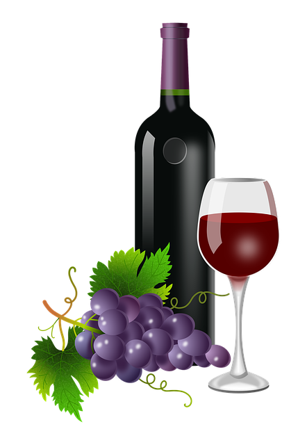 Grapes, Glass, Bottle, Vine, Vineyard, Wine, Plants
