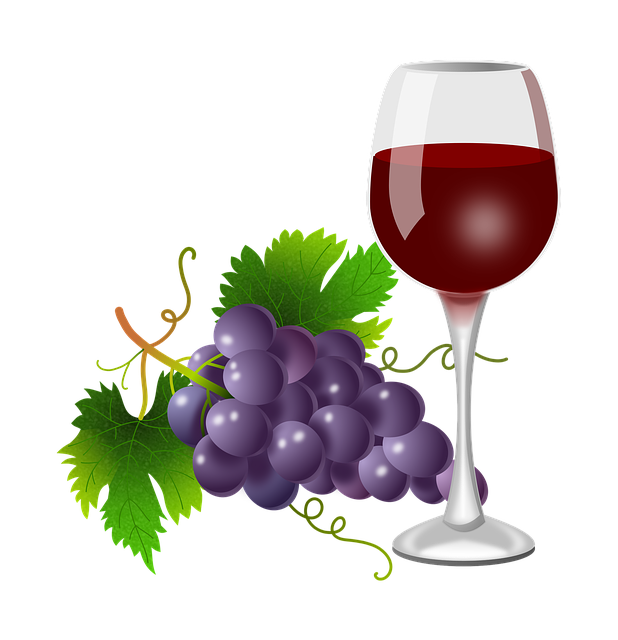 Grapes, Glass, Vine, Vineyard, Wine, Plants, Nature