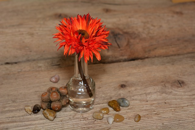 Flower, Plastic Flower, Art Flower, Red, Stones, Vase