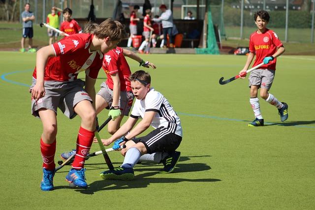 Competition, Ball, Players, Hockey, Field Hockey, Play
