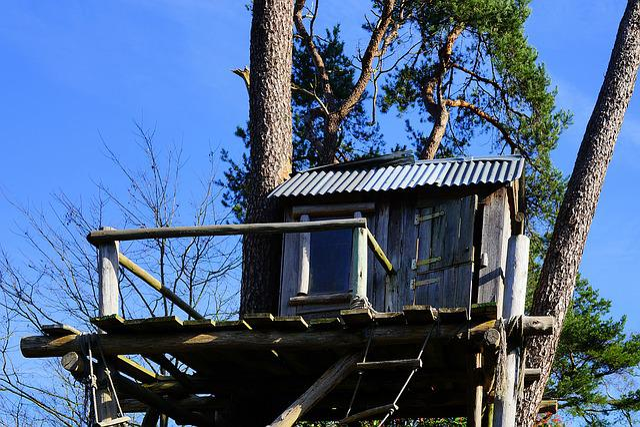 Tree, Treehouse, Nature, Tree Hut, Wood, Play, Retreat
