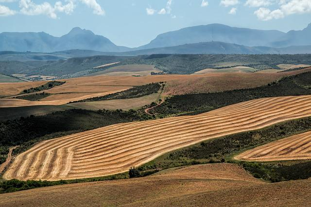 Landscape, Wheat Fields, Harvest, Ploughed, Mountains