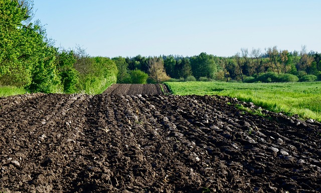 Arable, Field, Landscape, Agriculture, Spring, Plowed