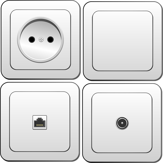 Electronics, Switch, Plug Socket, Socket, Plug, Power