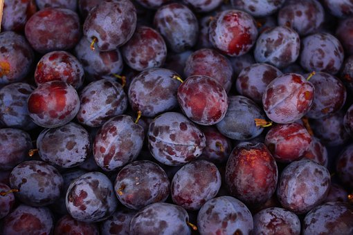 Plums, Fruit, Ripe, Violet, Fruits, Plum, Vitamins