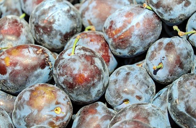 Plum, Plums, Fruit, Real Plum, Blue Violet, Healthy