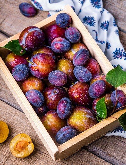 Plum, Box, Fruit, Summer, Still Life, Vitamins, Garden
