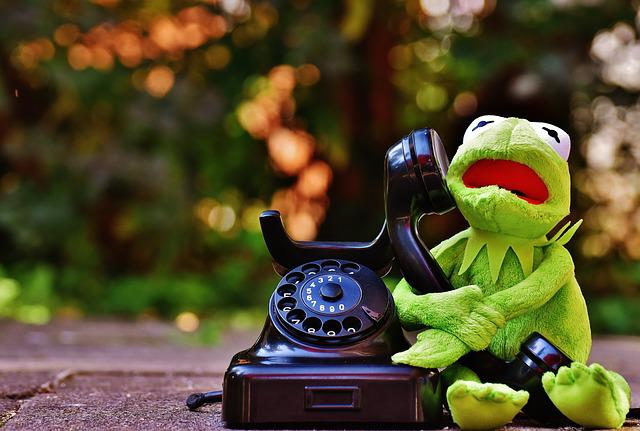 Kermit, Frog, Phone, Fig, Funny, Frogs, Animal, Plush