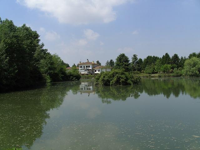 Fish Pond, Italy, Pocenia