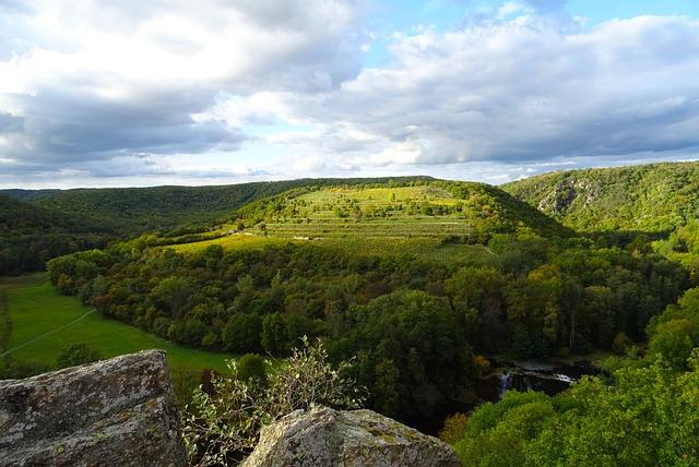 Nature, Czechia, Podyjí National Park, Protected Area