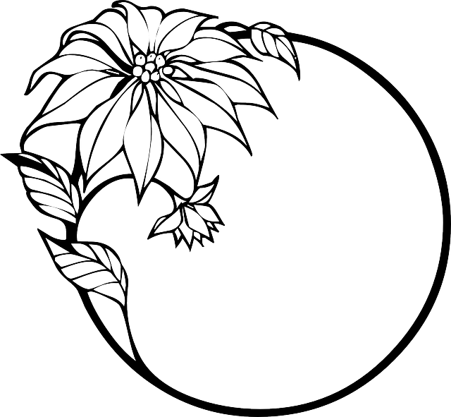 Poinsettia, Christmas, Christmas Flower, Wreath