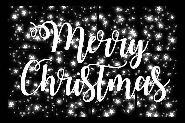 Christmas, Star, Advent, Poinsettia, Decoration, Decor