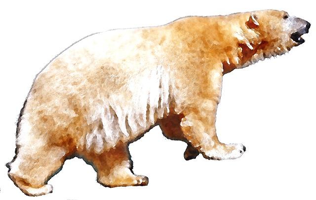 Polar Bear, Watercolor, Animal, Oekaki