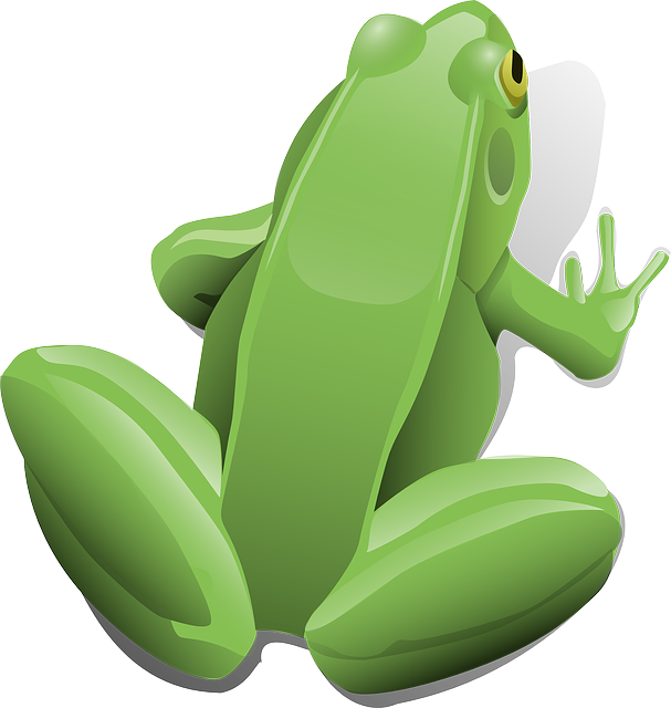 Frog, Amphibian, Aquatic, Sitting, Jumping, Toad, Pond